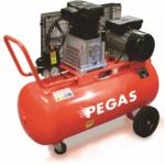 Масляный компрессор Pegas DH-30100 Производительность 354 л/мин, тип-поршневой ,прямой привод,мощность 2,2 кВт, объем ресивра 100 л , максимальное дав