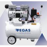 Бесшумный компрессор PG-800/безмасляный.Производительность 180 л/мин, тип-поршневой ,мощность 0,8 кВт, объем ресивра 25 л , максимальное давление 8Бар,напряжен
