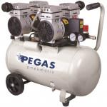 Бесшумный компрессор PG-800*2 /безмасляный.Производительность 290 л/мин, тип-поршневой ,мощность 1,5 кВт, объем ресивра 50 л , максимальное давление 8Бар,напря